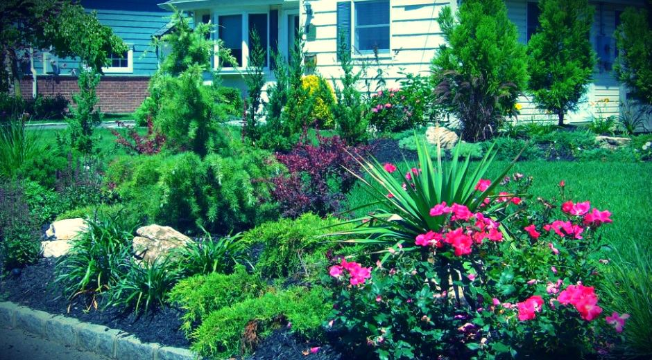 Front Yard Landscaping Long Island